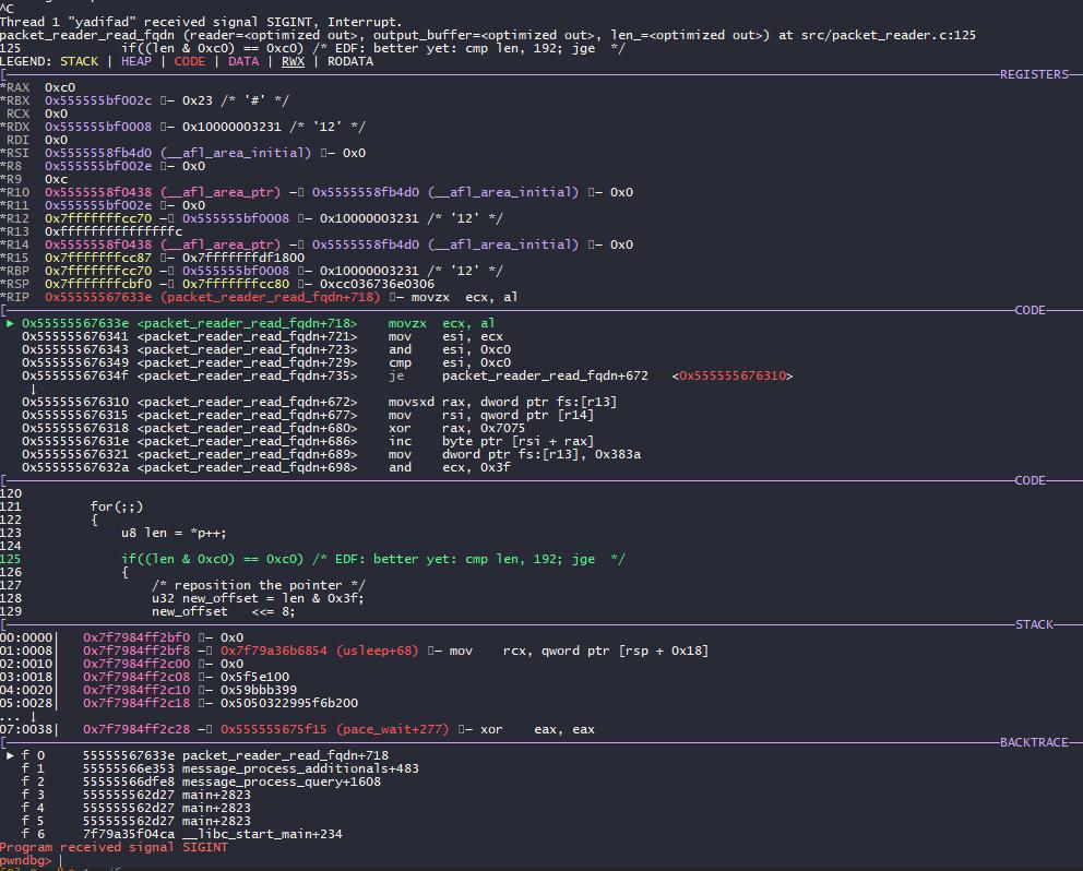 Estado del proceso de yadifa DNS