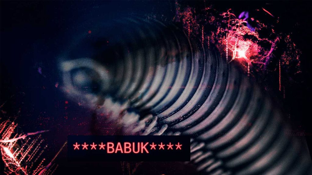 Babuk's source code has yielded some relevance conclusions to the field of cybersecurity